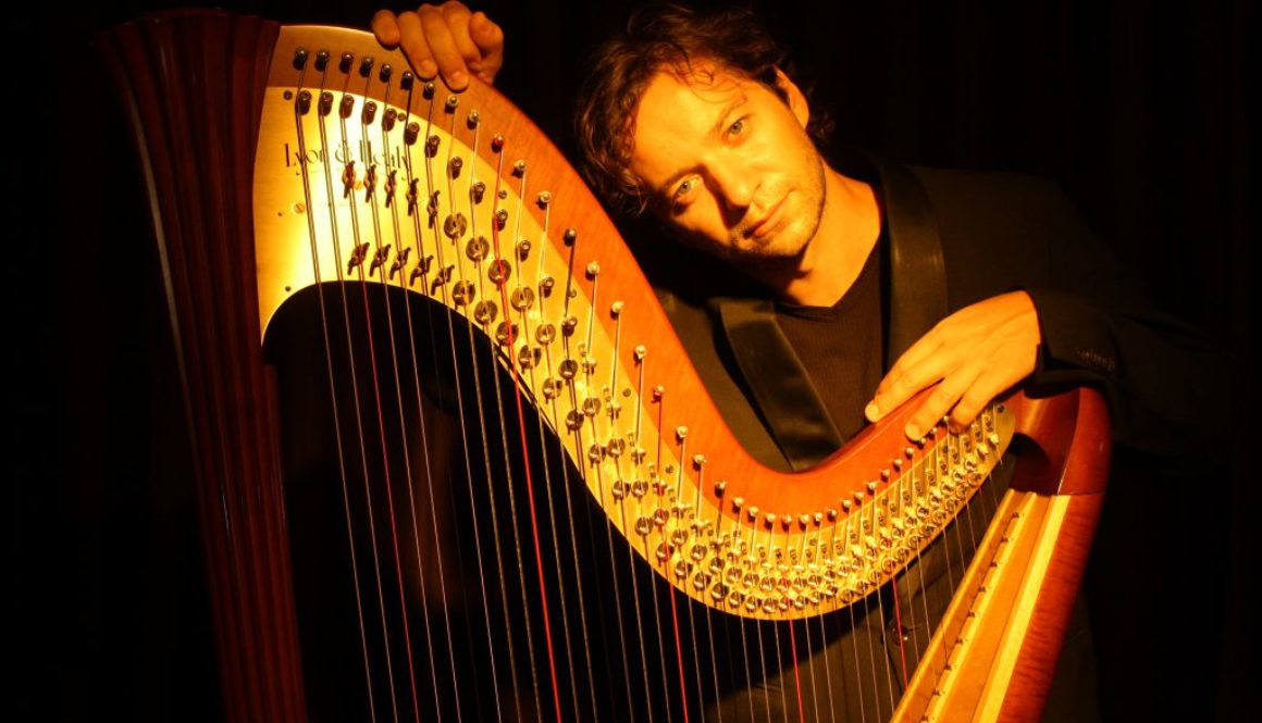 Nartan electroacoustic harp. Photo by A. Holzner.