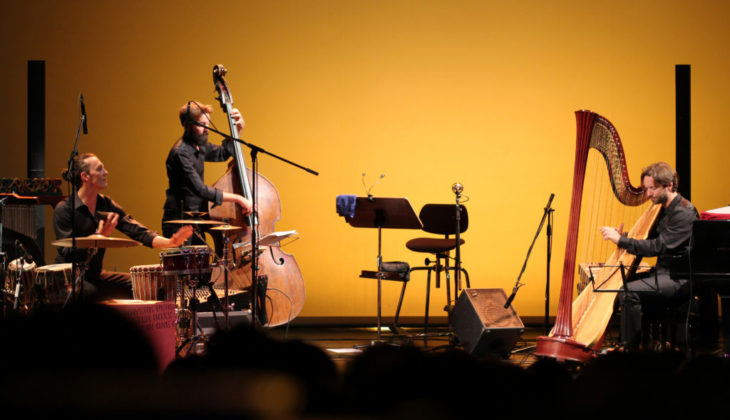 Nartan - Harpfully - Photo Jacopo Bellini